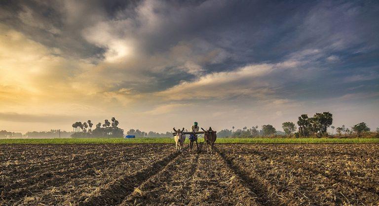 Farm sector reforms by Modi Government