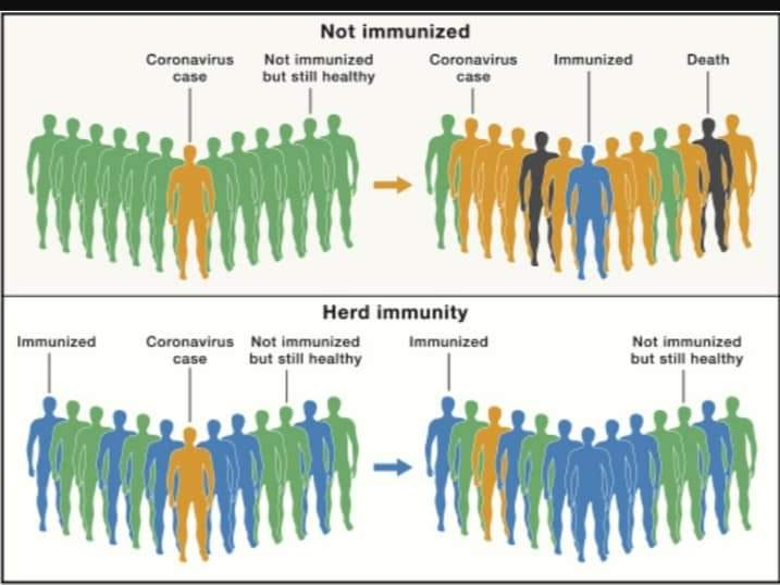 Achieving herd immunity through natural infection will never happen : Dr Pravin Kumar