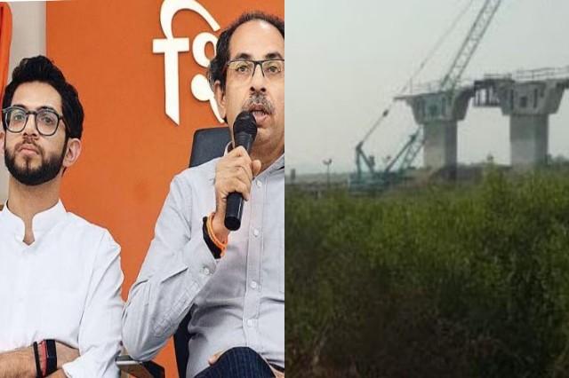 Maharashtra Govt approves axing of Mangrove area for Airoli-Thane road flyover