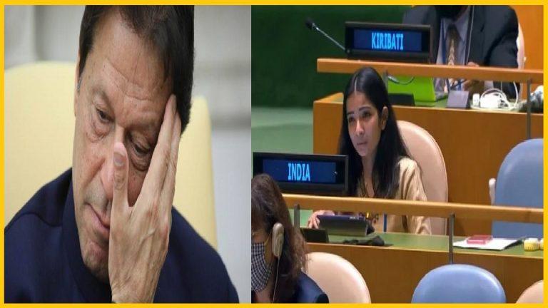 "India at UN: ""Pakistan nurturing terrorists in their backyard to attack their neighbours"""